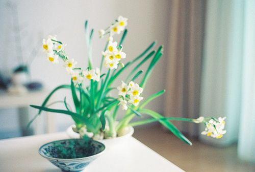 孤单寂寞的说说心情短语 下辈子做筷子,就不会孤单